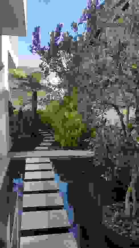 Espejo de agua vista 1 Huatan Jardines de estilo moderno