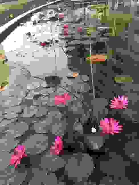 LA COSTERA PAISAJISMO Y JARDINERIA Garden Pond