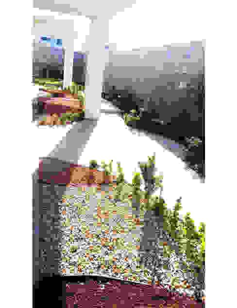DISEÑO DE JARDINES PARA CASAS MUESTRA Espacios comerciales de estilo minimalista de LIVKA, Diseño de Jardines y Arquitectura Minimalista