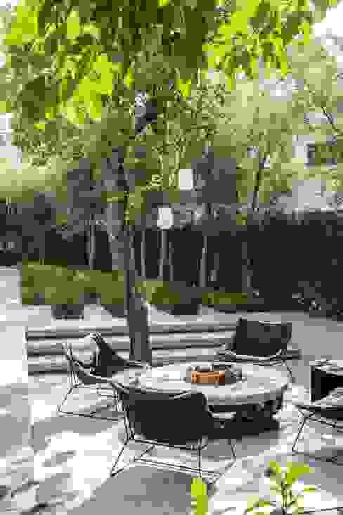 Paisajismo Jardines modernos de AAVE Diseño y Construcción Moderno