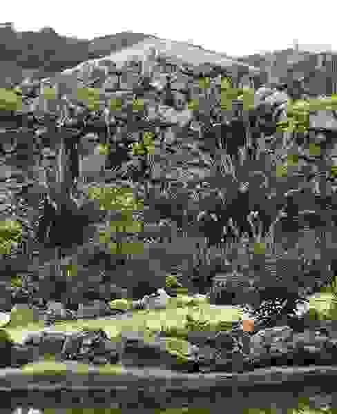 Olaias Jardins mediterrânicos por Maria Mayer | Interior & Landscape Design Mediterrânico