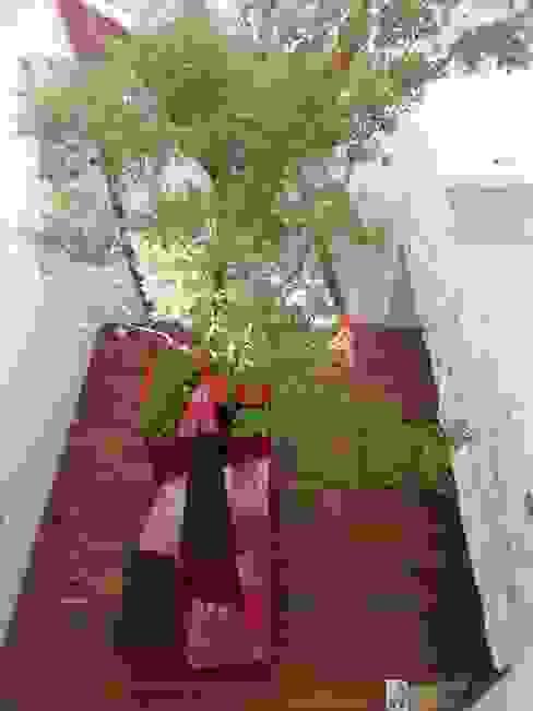VV1412 Balcones y terrazas modernos de Ambiente Arquitectos Asociados, S.A de C.V. Moderno