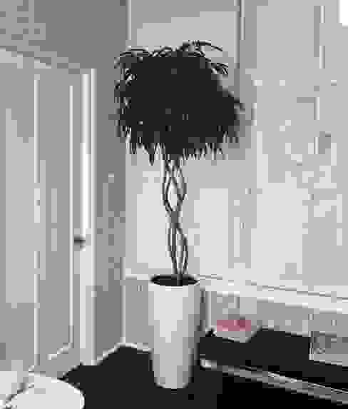Plantas en macetas Arquitectura Viva - Alexandra Patow Pasillos, vestíbulos y escaleras clásicas