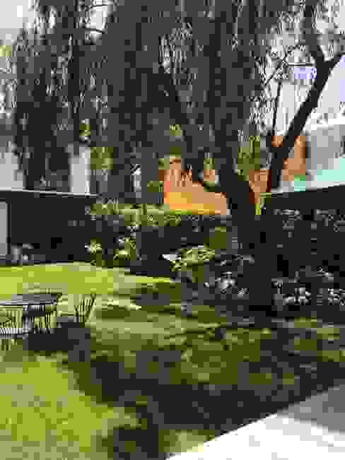 Jardin Sauce Jardin Urbano Jardines clásicos