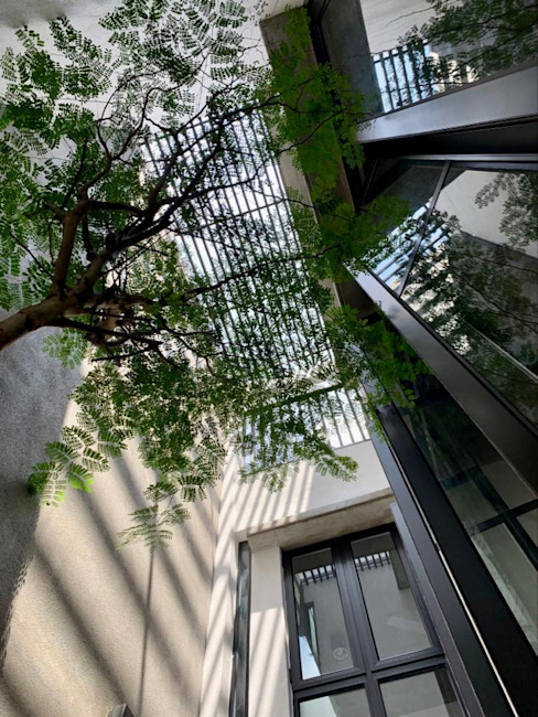 Internal courtyard looking up patch of sky N O T Architecture Sdn Bhd Terrace