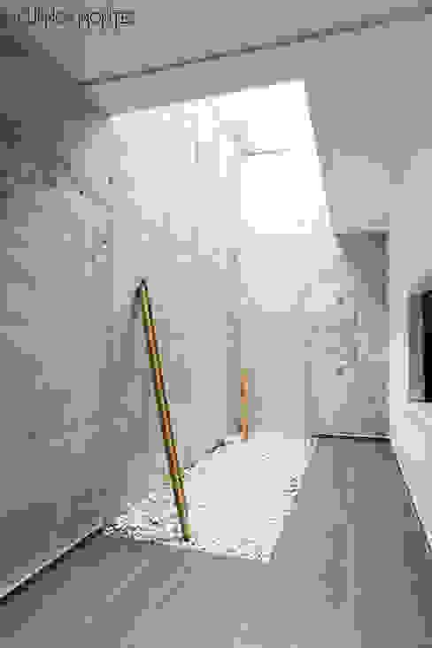 Patio inglés CUENCAMONTES arquitectura, ingeniería y medio ambiente Jardines de invierno de estilo moderno