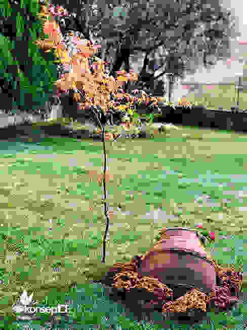 BADEMLİ N.Ş Özel Konut konseptDE Peyzaj Fidancılık Tic. Ltd. Şti. Rustik Bahçe