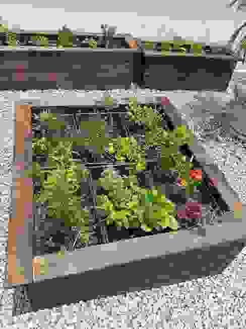 Jardiner´ía Exterior Jardineria bonaterra JardínPlantas y flores