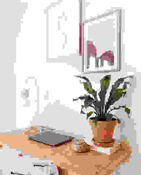 Escritório com plantas Bioma Plants EscritórioAcessórios e decoração