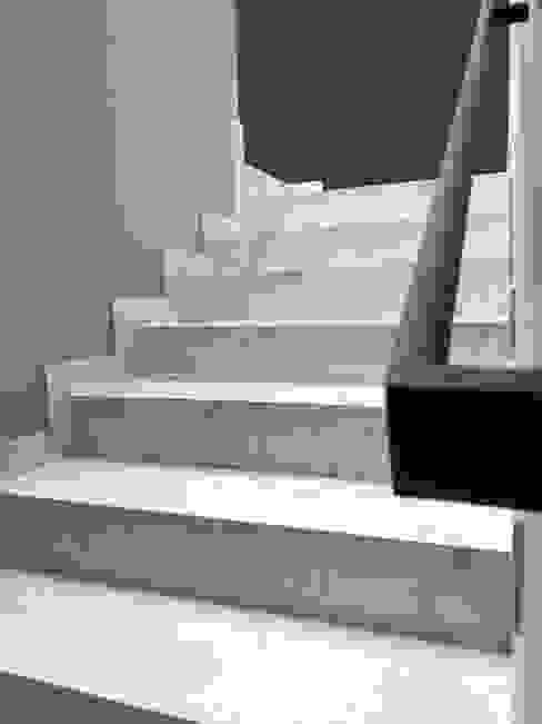 ESCALERA PRINCIPAL DE LEON PRO Escaleras