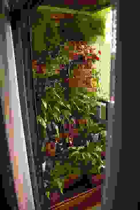 Sacada Verde- Londrina/PR Bambusa- Bioarquitetura Varandas Madeira Verde