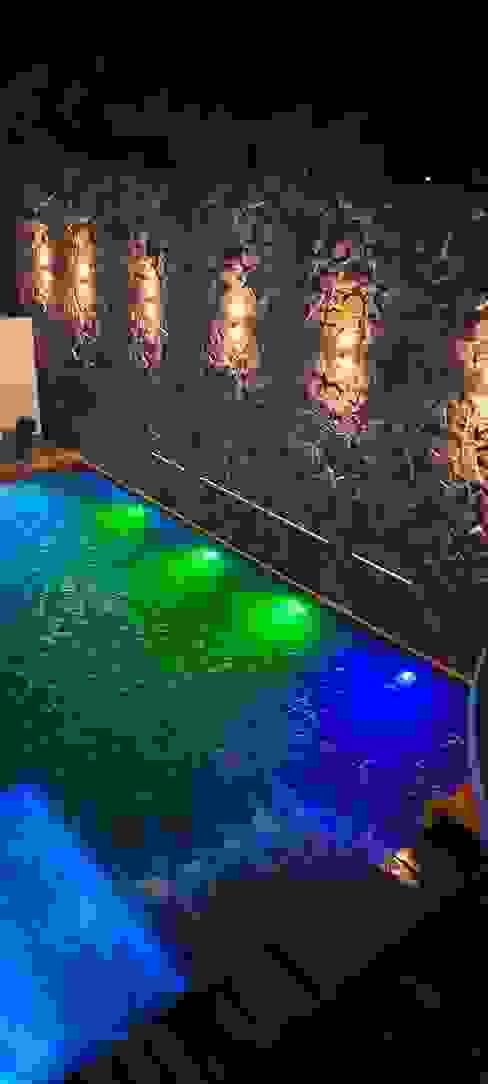 Albercas DCA モダンスタイルの プール