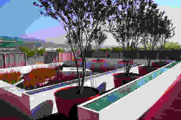 Jardins surprise Moderner Garten von Planungsbüro STEFAN LAPORT Modern