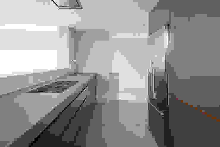 Whitton Road Modern kitchen by Phillips Tracey Architects Modern