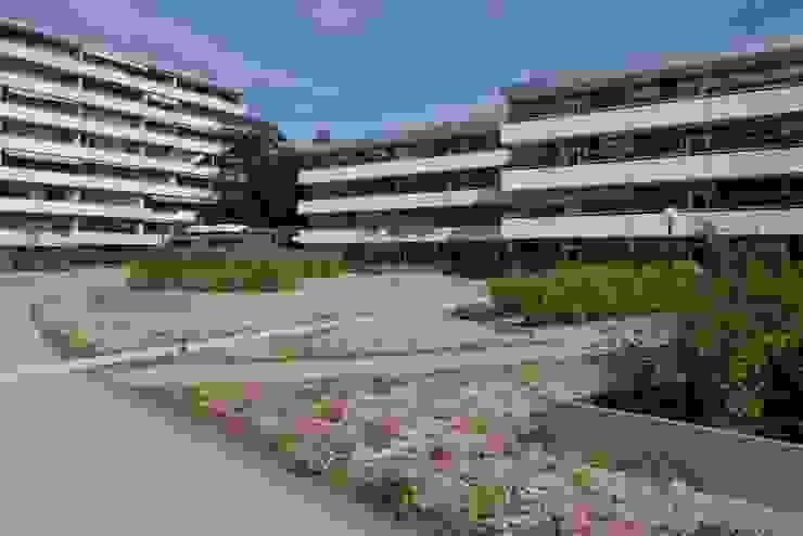 Plantanenallee Kerpen Häuser von Optigrün international AG