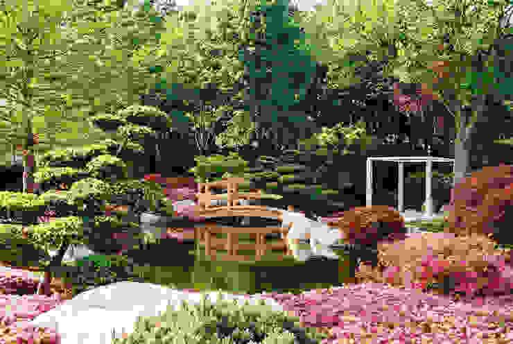 モダンな庭 の Kirchner Garten & Teich GmbH モダン