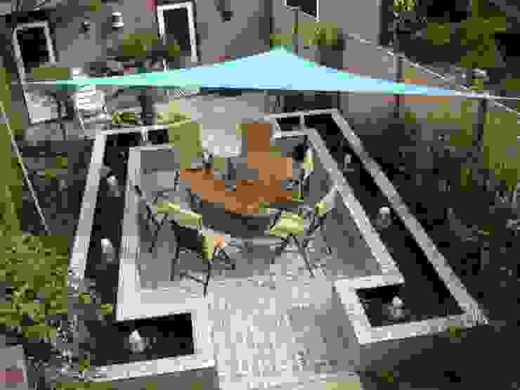 Сады в . Автор – Kolory Maroka,