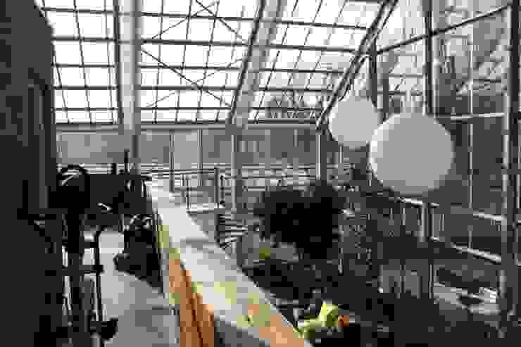 Haus im Glashaus, Nettetal Ausgefallener Balkon, Veranda & Terrasse von Klaus Schmitz-Becker Architekt Ausgefallen