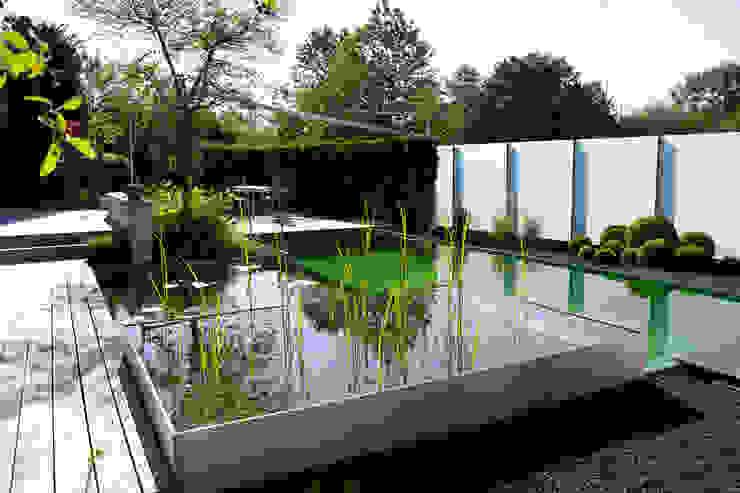 Kolam renang halaman oleh Balena GmbH, Modern