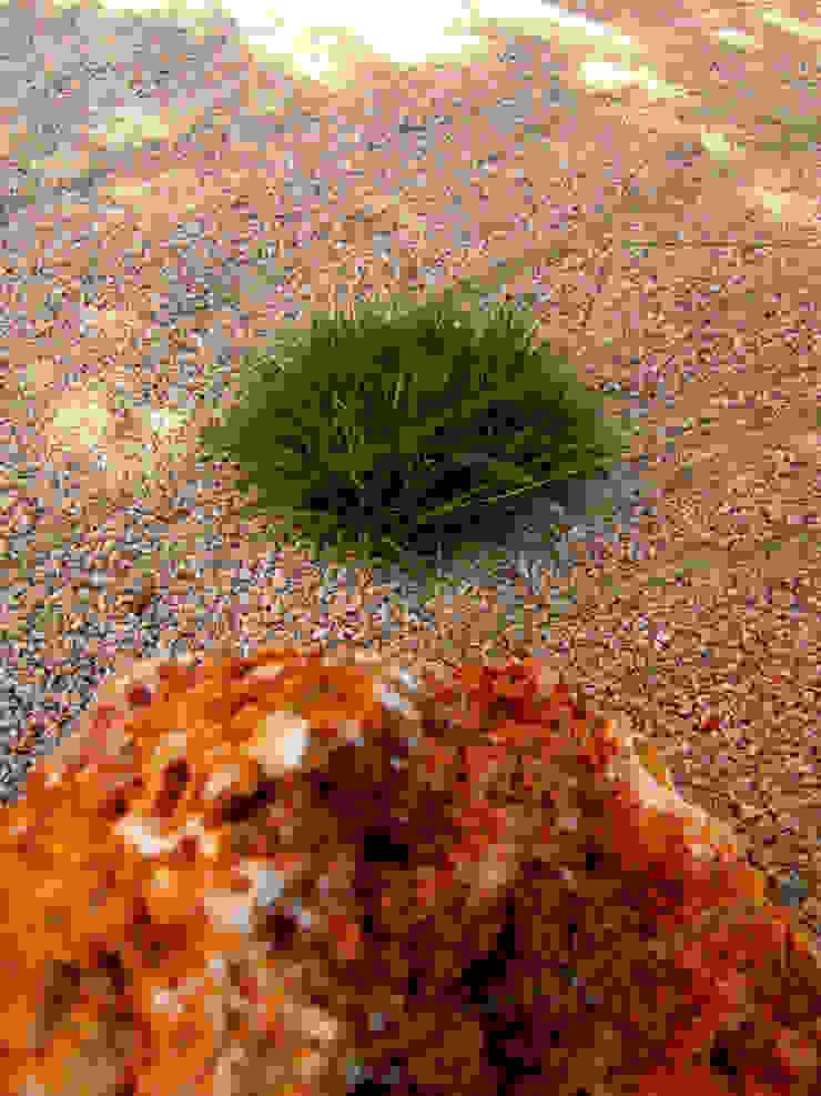 Ametlla de Mar Jardines de estilo mediterráneo de Simbiosi Estudi Mediterráneo