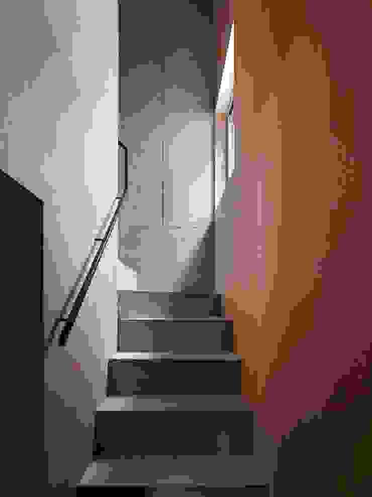 階段 モダンスタイルの 玄関&廊下&階段 の 小泉設計室 モダン