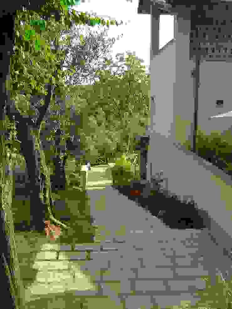 Un agriturismo nelle colline Versiliesi di Verde Passione Mediterraneo