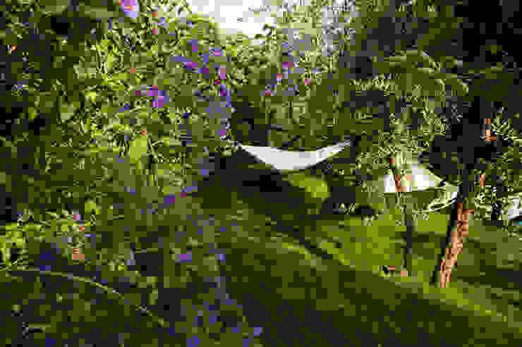 de Verde Passione Mediterráneo