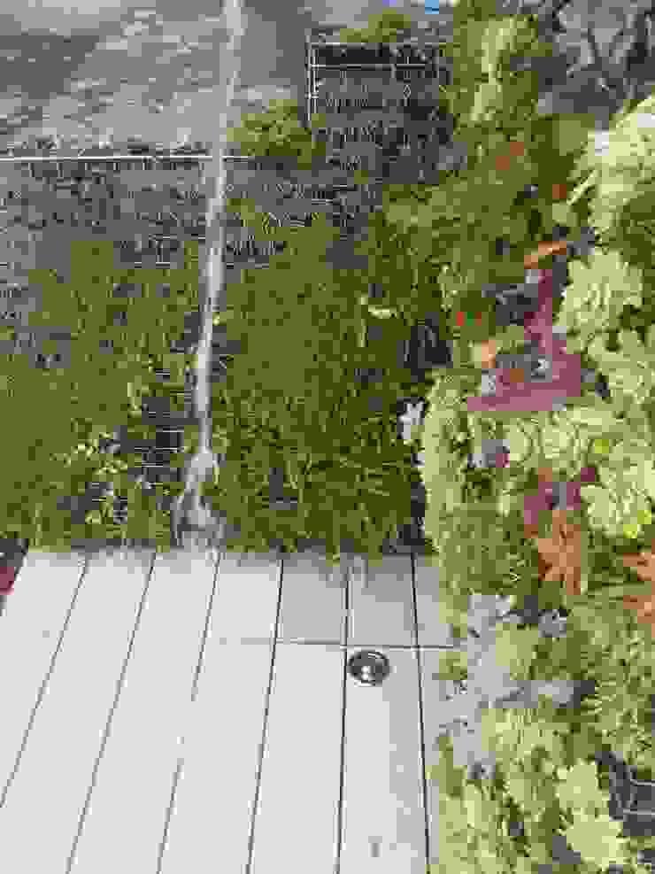 DUCHA VEGETAL Jardines de estilo ecléctico de PhytoKinetic S.L. Ecléctico