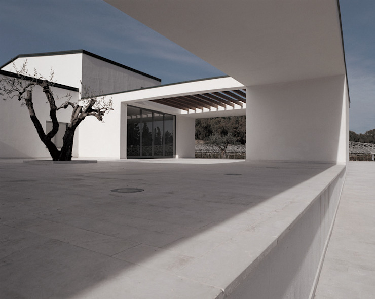 TAVERNA WINERY Case in stile minimalista di ONSITESTUDIO Minimalista