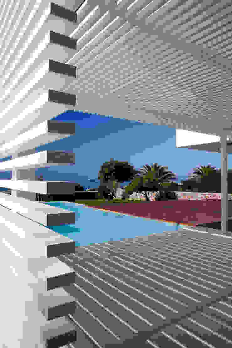 Piscine moderne par dom arquitectura Moderne