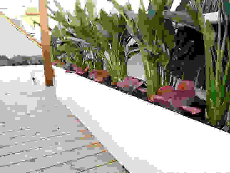 Naturalgreen Jardiners 陽台、門廊與露臺 植物與花