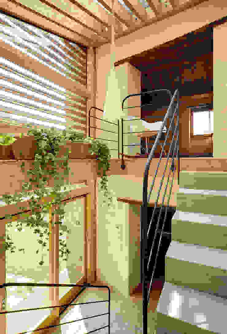 Modern Corridor, Hallway and Staircase by Arcostudios Modern