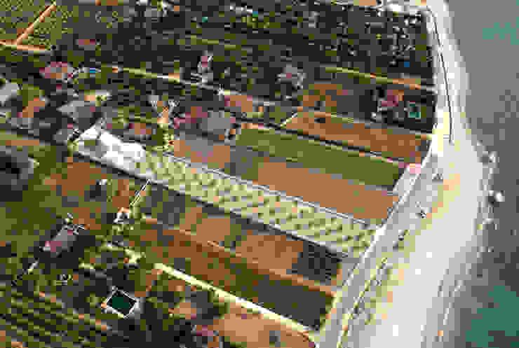 Casa para un fotógrafo 2 en el Delta del Ebro Jardines de OFFICE OF ARCHITECTURE IN BARCELONA SLP (OAB)