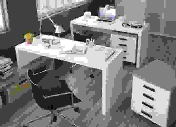 DESPACHOS Y OFICINAS de Muebles Flores Torreblanca Clásico