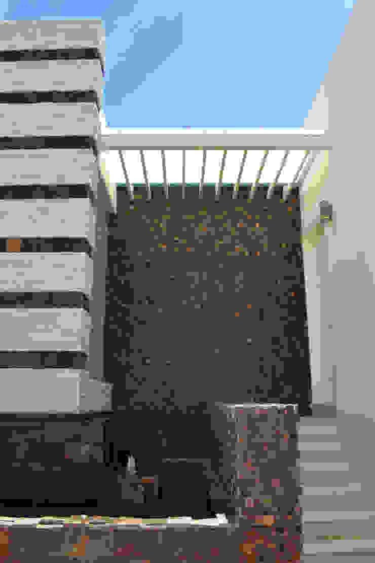 INGRESO DE SERVICIO Casas modernas de ro arquitectos Moderno
