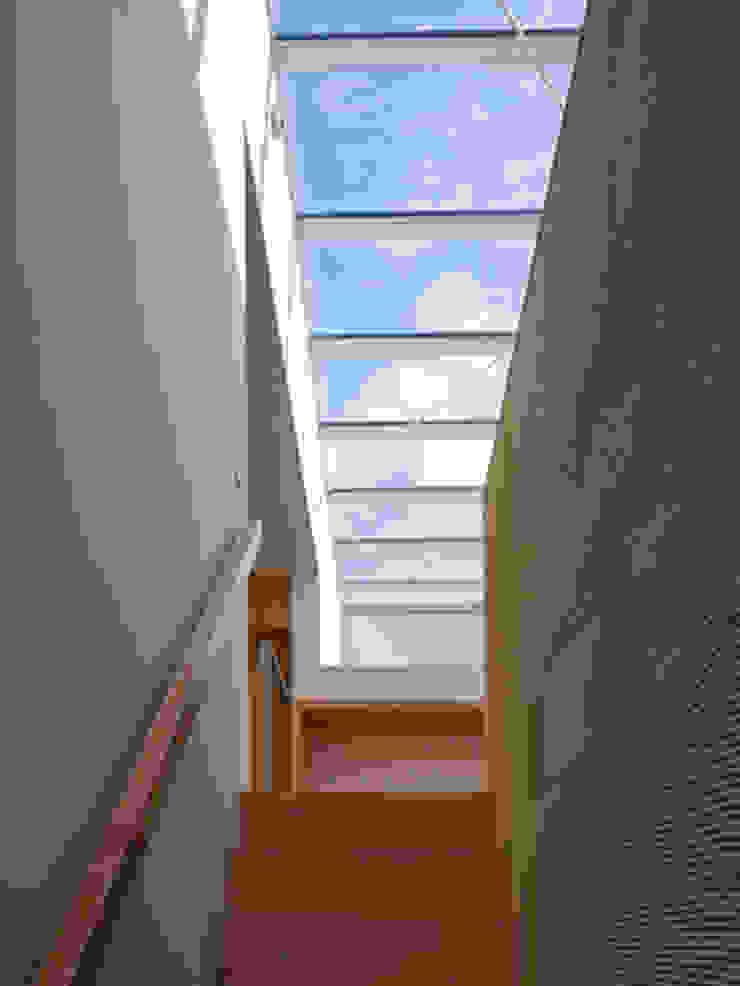 春日丘の家 モダンスタイルの 玄関&廊下&階段 の 小田裕二建築設計事務所 モダン
