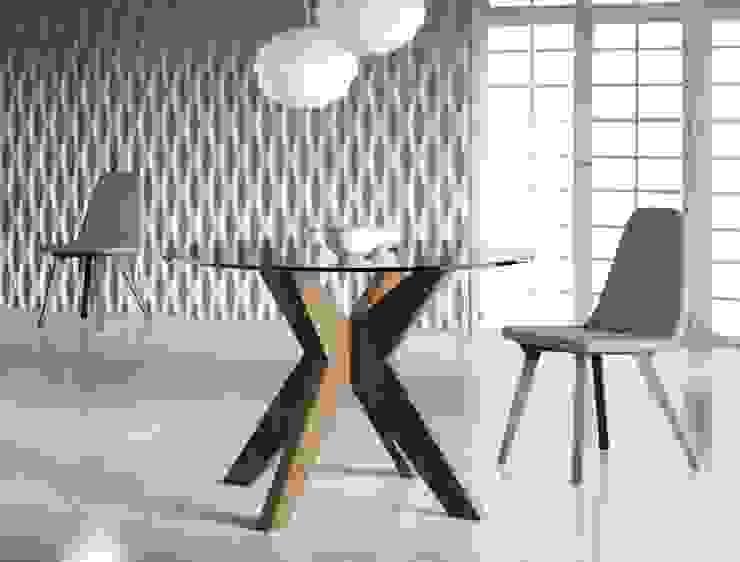 minimalist  by Gallega Design, Minimalist