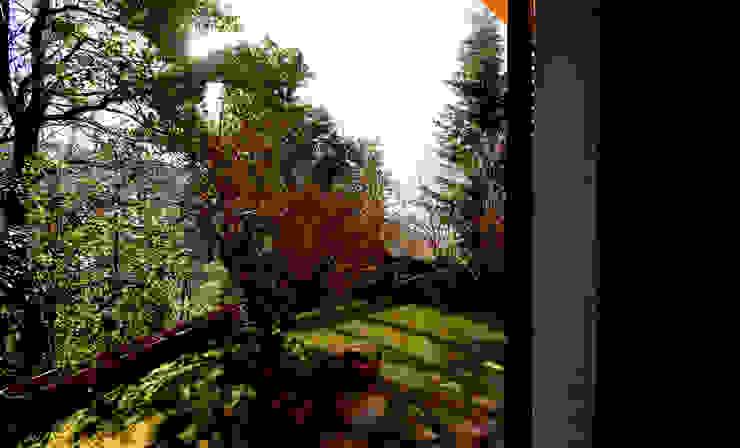 Villa Lago Maggiore – Italia Giardino in stile rustico di Marco Barbero Rustico
