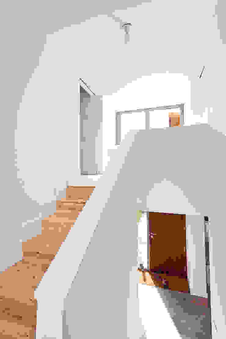 Escalera en Casa Anoro Pasillos, vestíbulos y escaleras de Anna & Eugeni Bach