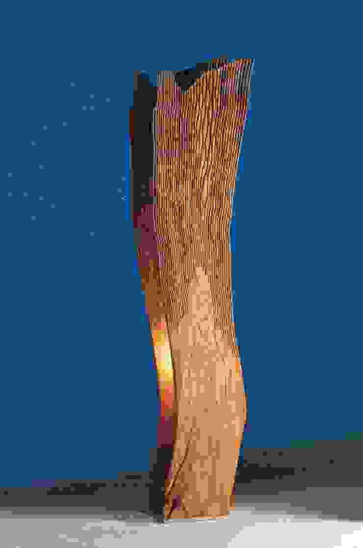 Eliotropica di pyka-leone Mediterraneo