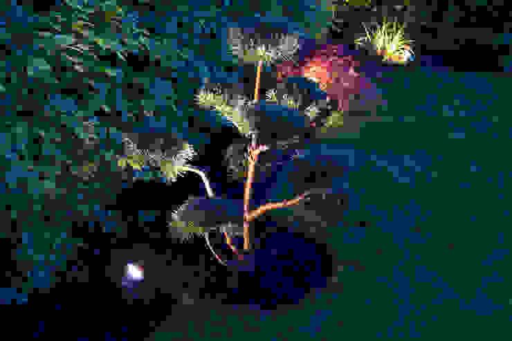 Emotionale Gartenbeleuchtung für 365 Tage Gartenerlebnis von Oswald Gärten Ausgefallen