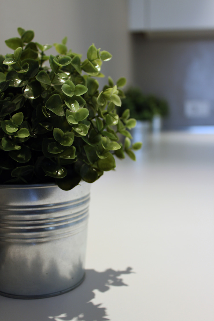 Laura Lucente Architetto HouseholdPlants & accessories