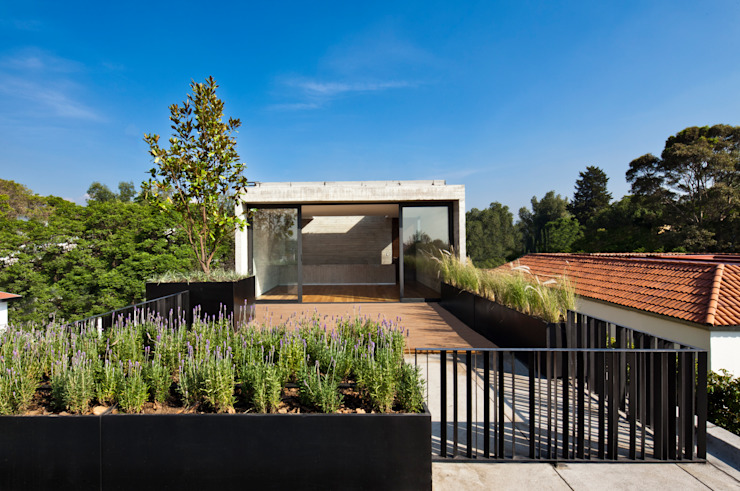 Balcones y terrazas modernos de © Sandra Pereznieto Moderno