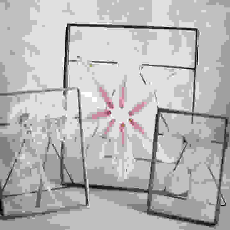 Danta zinc frames: eclectic  by Decorum, Eclectic