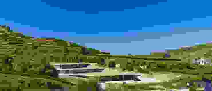 Vineyard Franz Keller - nominee for the German Lighting Design Prize 2014 Tobias Link Lichtplanung Ruang Penyimpanan Wine/Anggur Modern