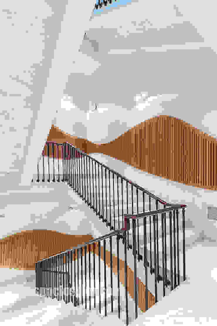 Escaleras Pasillos, vestíbulos y escaleras modernos de Espacios y Luz Fotografía Moderno