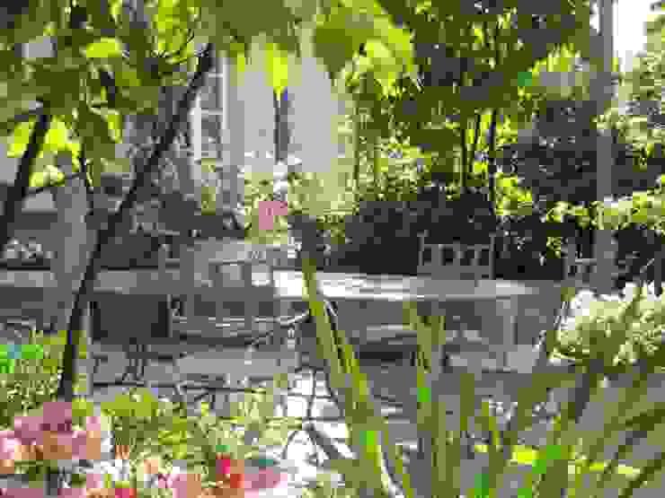 """"""" Classico con esuberanza """" - terrazza di pertinenza a dimora neoclassica. Balcone, Veranda & Terrazza in stile classico di MASSIMO SEMOLA PROGETTAZIONE GIARDINI MILANO Classico"""