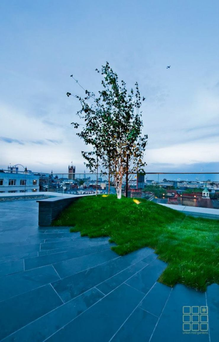 Victoria 1, London Modern balcony, veranda & terrace by Urban Roof Gardens Modern