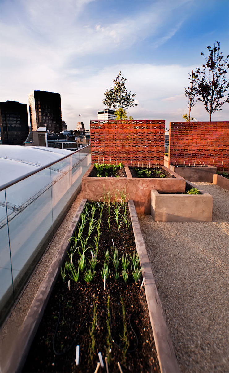 Victoria 2, London Modern balcony, veranda & terrace by Urban Roof Gardens Modern