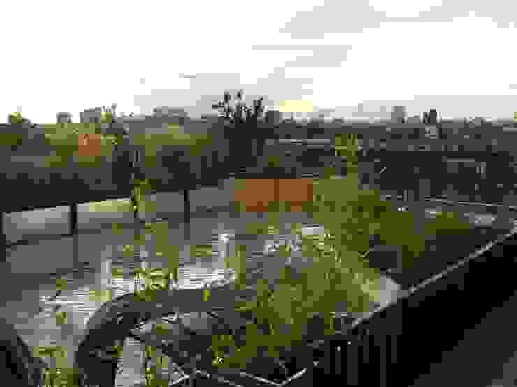 Urban Roof Gardens의  베란다, 모던